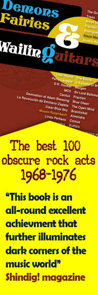 Demons Fairies & Wailing Guitars: The Best 100 Obscure Rock Acts 1968-1976 by Ra'anan Chelled